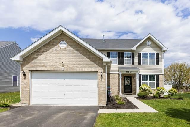 8009 Aaron Lane, Joliet, IL 60431 (MLS #11082061) :: Helen Oliveri Real Estate