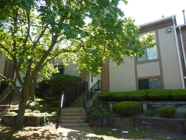 371 Wilmington Drive 3F, Bartlett, IL 60103 (MLS #11082110) :: Helen Oliveri Real Estate