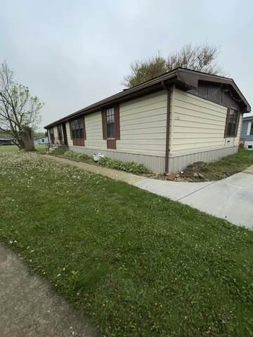 336 Tullamore Terrace, Matteson, IL 60443 (MLS #11082357) :: Helen Oliveri Real Estate