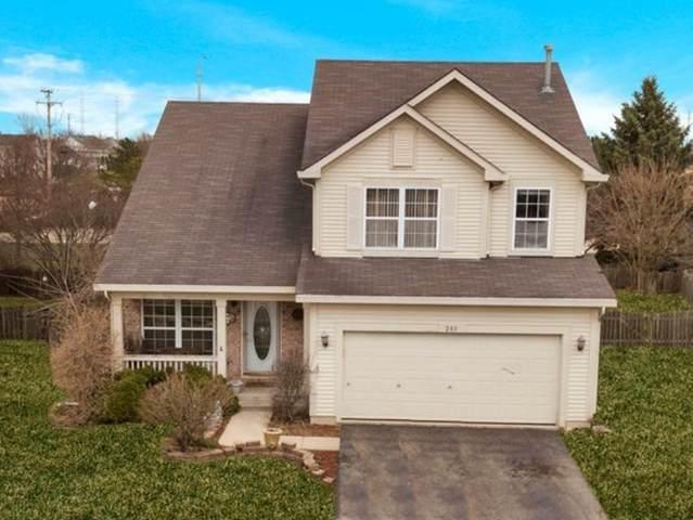 281 Traverse Court, Romeoville, IL 60446 (MLS #11082605) :: Helen Oliveri Real Estate