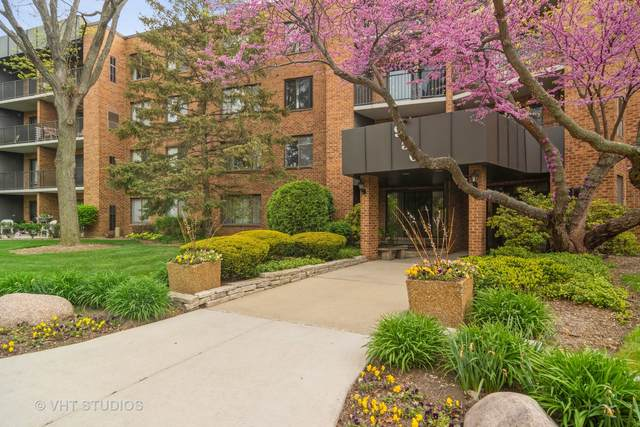 950 E Wilmette Road #111, Palatine, IL 60074 (MLS #11082758) :: Helen Oliveri Real Estate