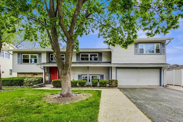 506 Bristol Lane, Elk Grove Village, IL 60007 (MLS #11082924) :: Helen Oliveri Real Estate