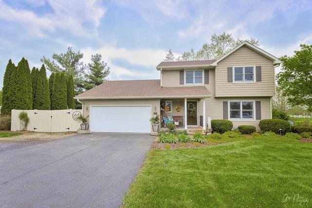 909 Ember Lane, Spring Grove, IL 60081 (MLS #11083336) :: Helen Oliveri Real Estate