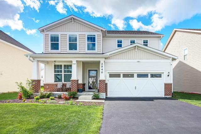 2540 Balsam Cove Road, Naperville, IL 60563 (MLS #11083366) :: Helen Oliveri Real Estate