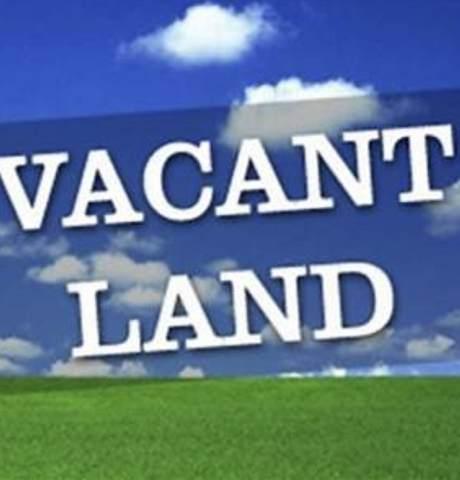 327 N Cherry Street, Itasca, IL 60143 (MLS #11083368) :: Helen Oliveri Real Estate