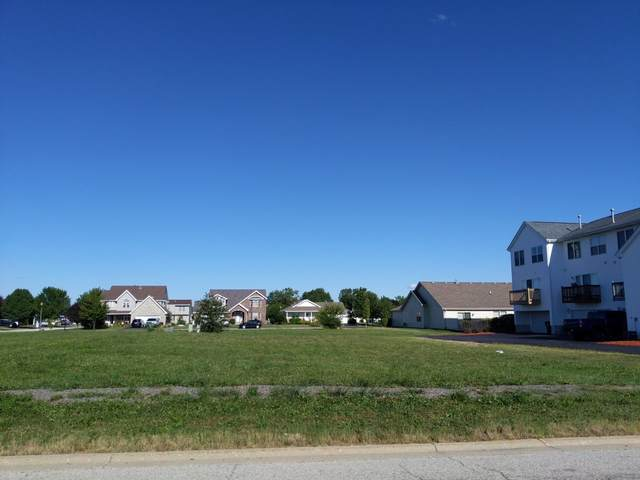 1447 Fox Hound Trail, Beecher, IL 60401 (MLS #11083513) :: Littlefield Group
