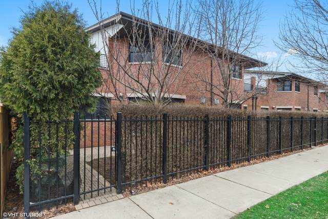 1684 S Albany Avenue, Chicago, IL 60623 (MLS #11083546) :: Littlefield Group