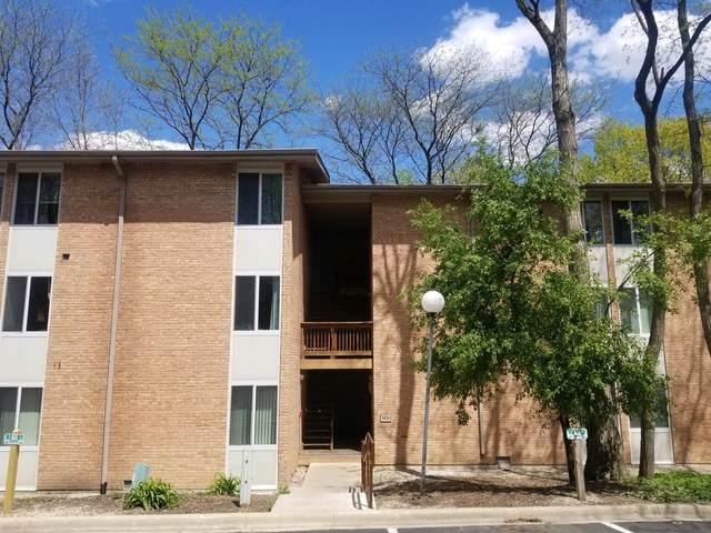 5813 Oakwood Drive B, Lisle, IL 60532 (MLS #11083575) :: Littlefield Group