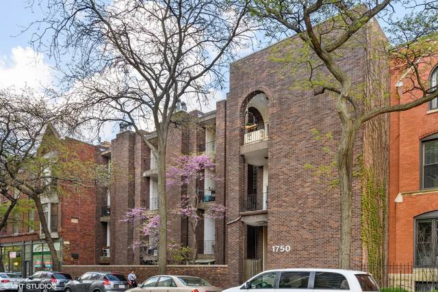 1750 N Wells Street #202, Chicago, IL 60614 (MLS #11083658) :: John Lyons Real Estate