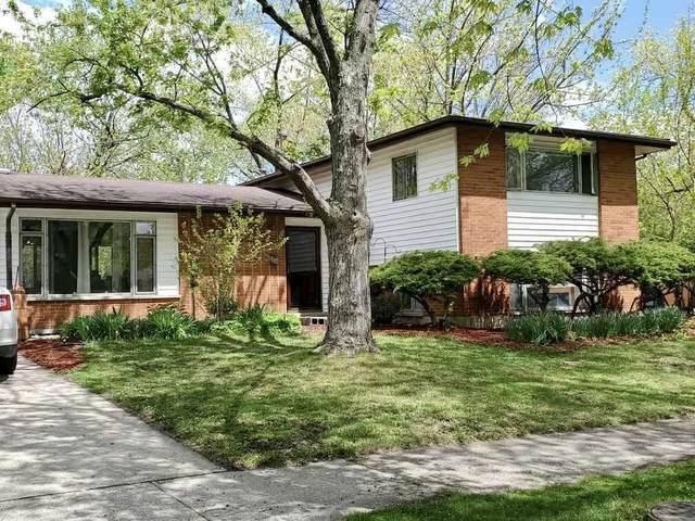 406 Illinois Street, Park Forest, IL 60466 (MLS #11083960) :: Littlefield Group