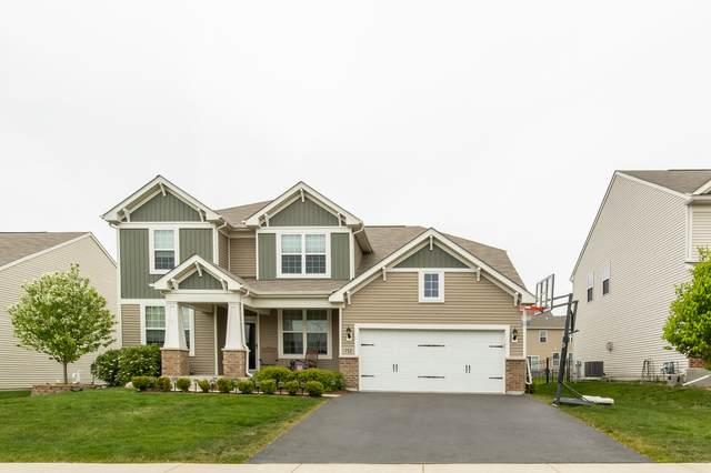 712 Rochester Lane, South Elgin, IL 60177 (MLS #11084101) :: Helen Oliveri Real Estate