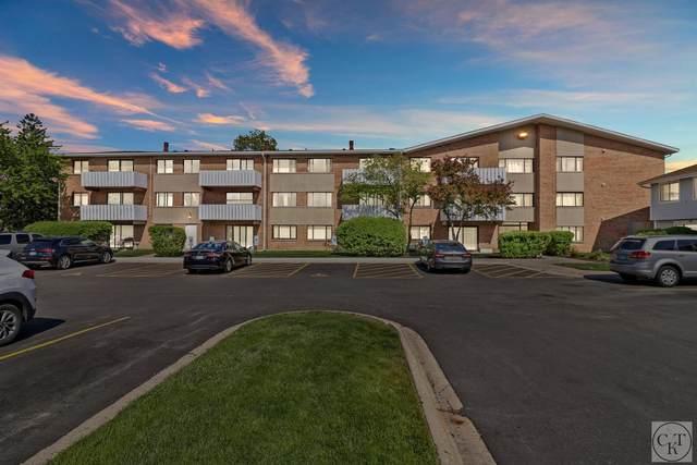 2000 Bayside Drive #114, Palatine, IL 60074 (MLS #11084560) :: Helen Oliveri Real Estate