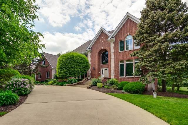 24 N Cutters Run Drive, South Barrington, IL 60010 (MLS #11084955) :: BN Homes Group