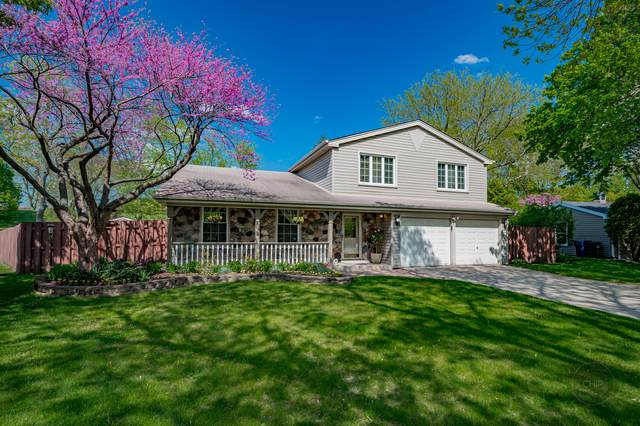 111 Hopi Court, Naperville, IL 60540 (MLS #11085392) :: The Wexler Group at Keller Williams Preferred Realty