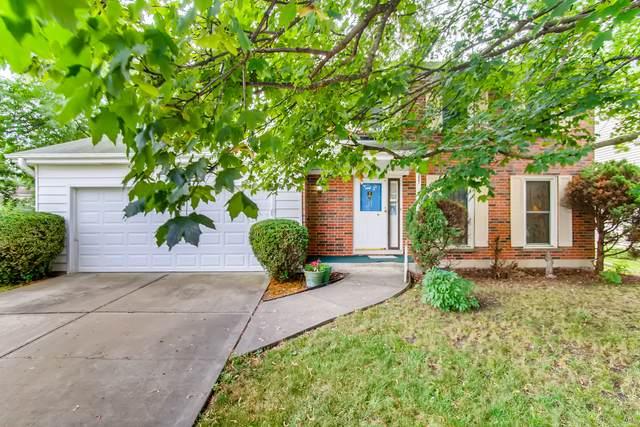 1021 Robey Avenue, Downers Grove, IL 60516 (MLS #11085737) :: Ryan Dallas Real Estate