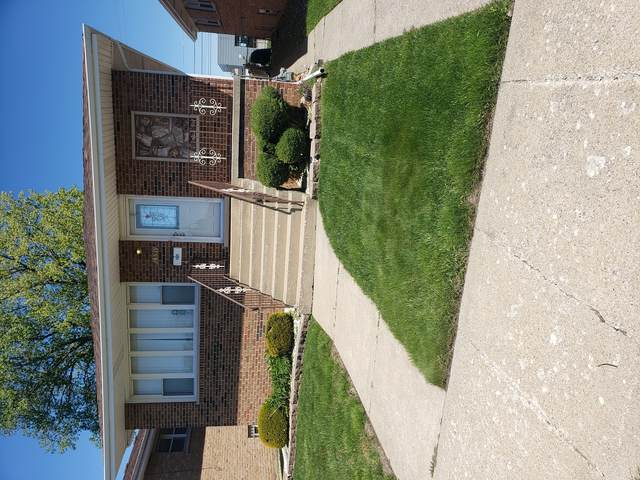 351 Hoxie Avenue, Calumet City, IL 60409 (MLS #11085873) :: Lewke Partners