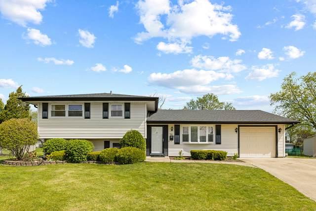 806 Malden Court, Schaumburg, IL 60193 (MLS #11085926) :: Littlefield Group