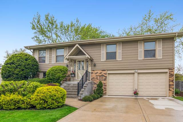 215 Circle Avenue, Bloomingdale, IL 60108 (MLS #11085943) :: Helen Oliveri Real Estate