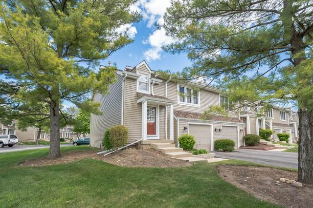 515 Hunters Way, Fox River Grove, IL 60021 (MLS #11086319) :: Helen Oliveri Real Estate
