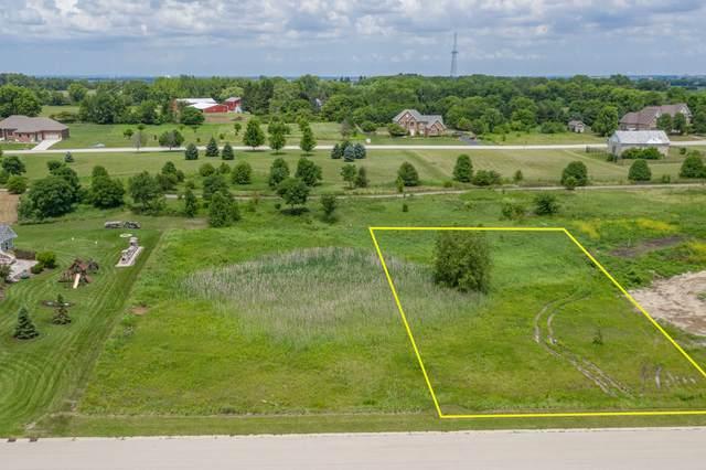 4153 Steam Mill Court, Oswego, IL 60543 (MLS #11086324) :: O'Neil Property Group