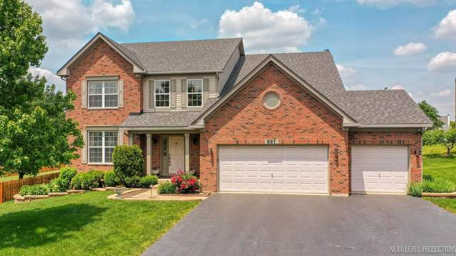 807 Spring Creek Circle, Naperville, IL 60565 (MLS #11086371) :: BN Homes Group