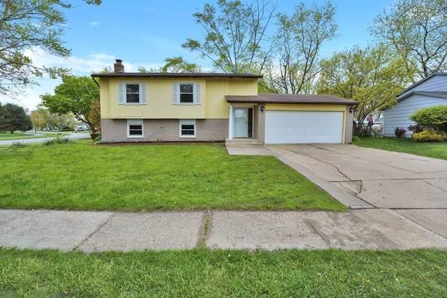 672 Raupp Boulevard, Buffalo Grove, IL 60089 (MLS #11086432) :: Littlefield Group