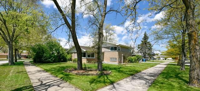 319 Carey Court, Chicago Heights, IL 60411 (MLS #11086518) :: Helen Oliveri Real Estate