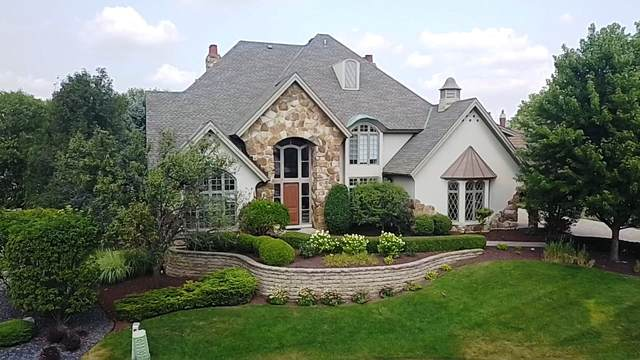 10724 Valley Court, Orland Park, IL 60462 (MLS #11086762) :: BN Homes Group