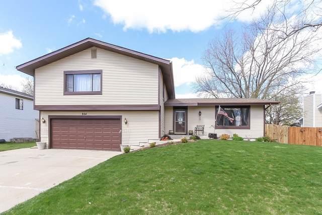 864 Marina Terrace E, Bartlett, IL 60103 (MLS #11087107) :: Ryan Dallas Real Estate