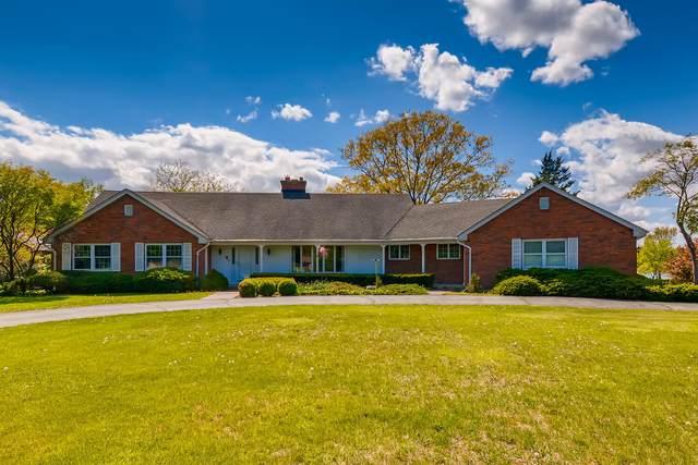 42 Witt Road, South Barrington, IL 60010 (MLS #11087131) :: Helen Oliveri Real Estate
