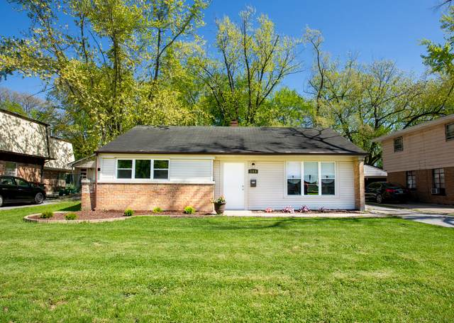 349 Neola Street, Park Forest, IL 60466 (MLS #11087476) :: Littlefield Group