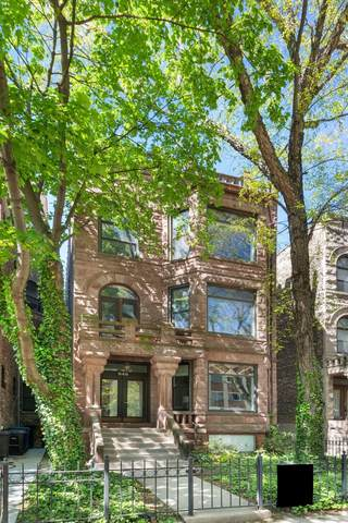 648 W Grace Street #1, Chicago, IL 60613 (MLS #11087487) :: Touchstone Group