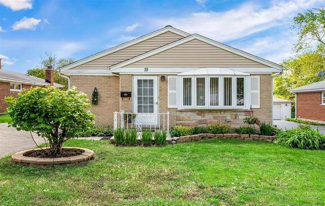 19 E Ardmore Avenue, Roselle, IL 60172 (MLS #11087558) :: Schoon Family Group