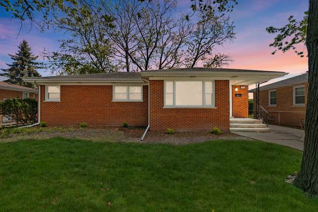 16409 Betty Lane, South Holland, IL 60473 (MLS #11087564) :: Helen Oliveri Real Estate