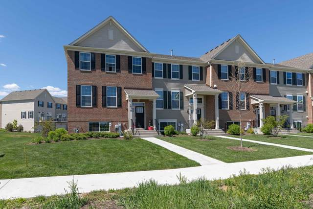 836 Shadowbrook Court, Oswego, IL 60543 (MLS #11087575) :: Littlefield Group