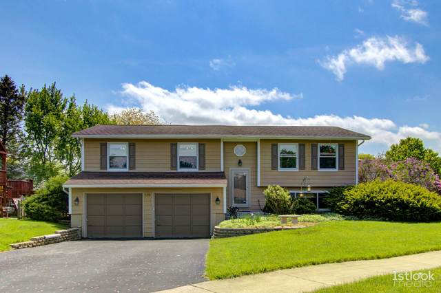 1316 Oconto Court, Naperville, IL 60564 (MLS #11087586) :: Carolyn and Hillary Homes
