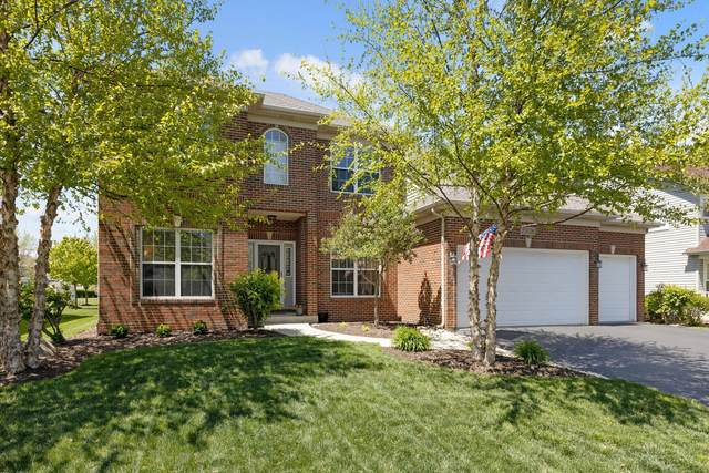 25036 Michele Drive, Plainfield, IL 60544 (MLS #11087614) :: Helen Oliveri Real Estate