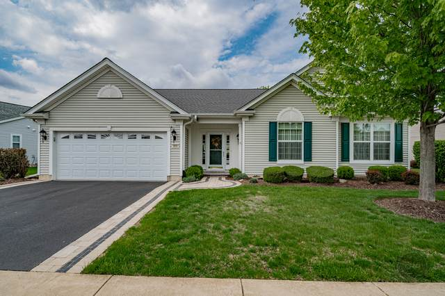 215 Honors Drive, Shorewood, IL 60404 (MLS #11087641) :: BN Homes Group
