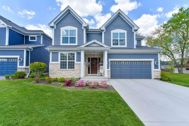 28W754 Ray Street, Warrenville, IL 60555 (MLS #11087698) :: Helen Oliveri Real Estate
