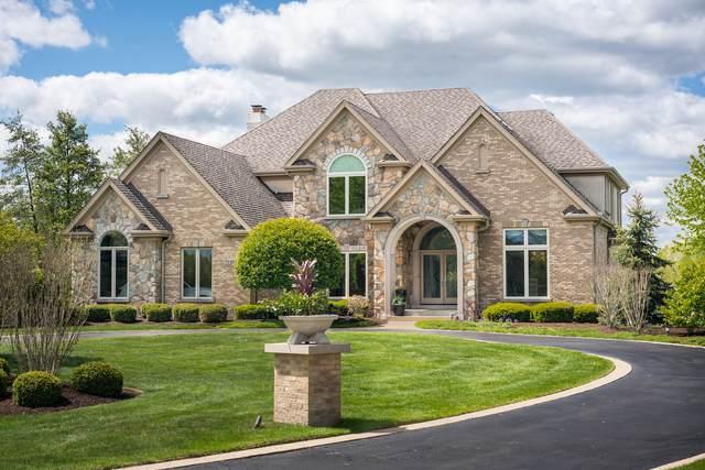 22290 N Foxtail Drive, Kildeer, IL 60047 (MLS #11087784) :: BN Homes Group