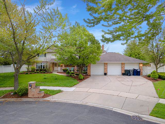 8107 Bayhill Court, Orland Park, IL 60462 (MLS #11087993) :: Littlefield Group