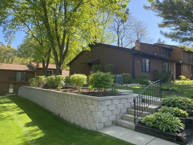 87 Mariner Lane #87, Fox Lake, IL 60020 (MLS #11088284) :: Helen Oliveri Real Estate