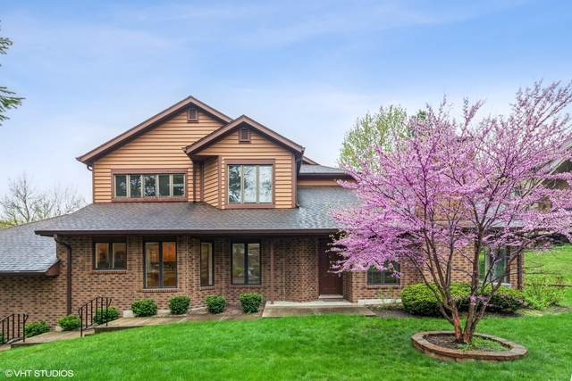 1100 Mistwood Lane, Downers Grove, IL 60515 (MLS #11088543) :: Ryan Dallas Real Estate