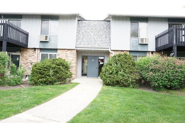 920 E Old Willow Road #104, Prospect Heights, IL 60070 (MLS #11088609) :: Littlefield Group