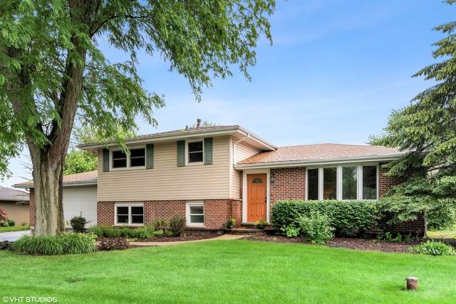 711 Buckboard Drive, New Lenox, IL 60451 (MLS #11088681) :: Suburban Life Realty