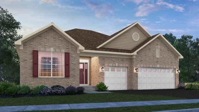 16017 S Longcommon Lane, Plainfield, IL 60586 (MLS #11088761) :: Helen Oliveri Real Estate