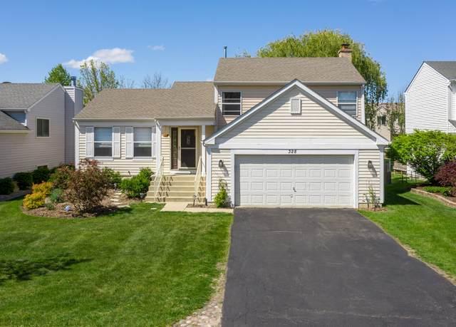 328 Fawn Lane, Hainesville, IL 60030 (MLS #11088910) :: Ryan Dallas Real Estate