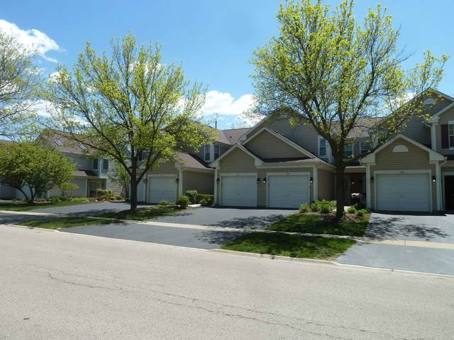 Address Not Published, Lake In The Hills, IL 60156 (MLS #11088948) :: Touchstone Group