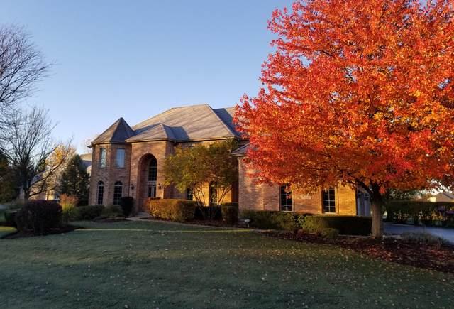 295 Joshua Drive, Hawthorn Woods, IL 60047 (MLS #11089010) :: Ryan Dallas Real Estate