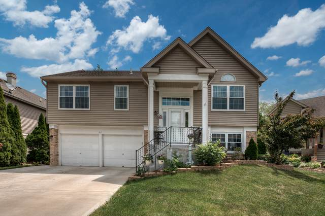 317 Bishop Court, Bartlett, IL 60103 (MLS #11089037) :: BN Homes Group